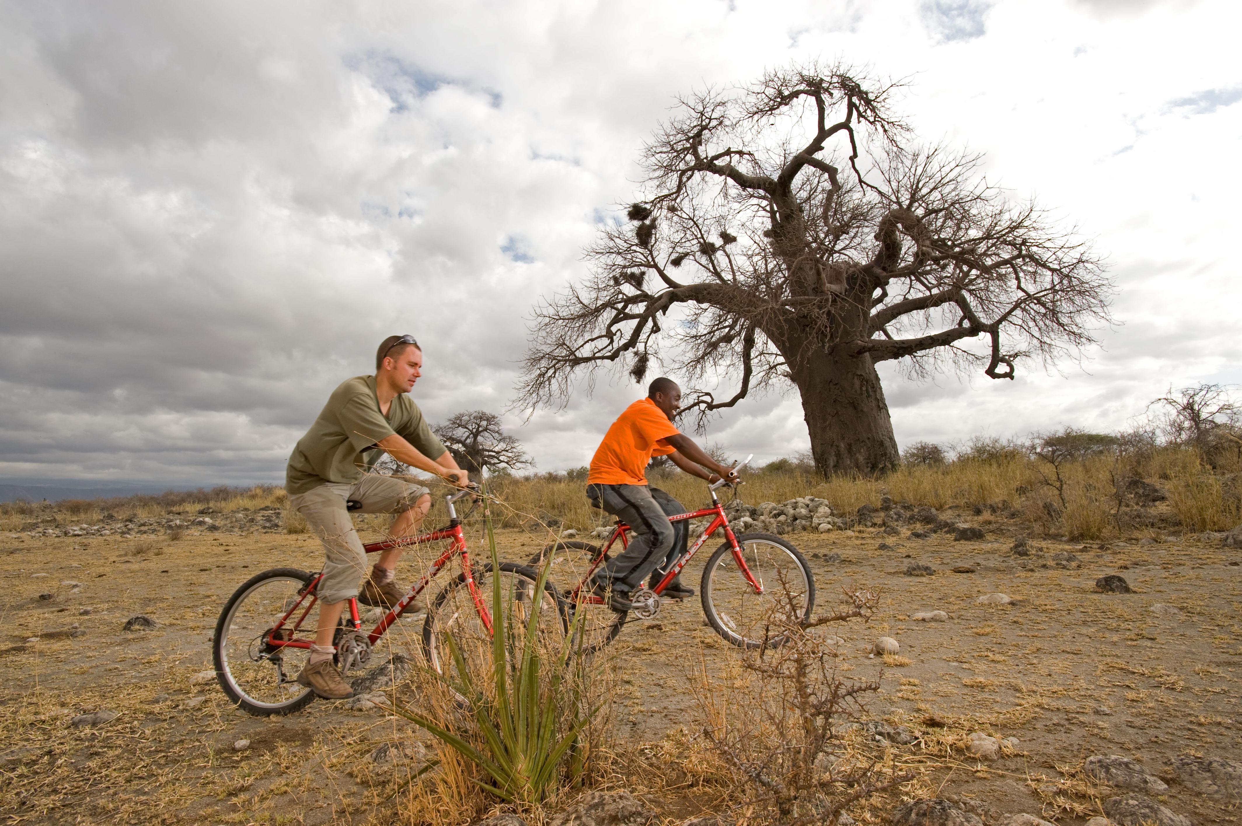 6 Days Safari Manyara, Serengeti, Ngorongoro 1